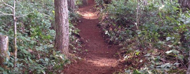 Trail Maintenance – Cumberland March 29th